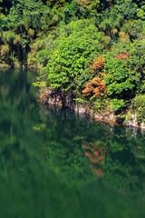 観音の池,
