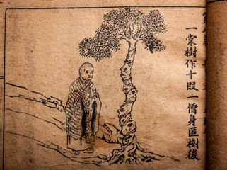 """A very old Chinese divination book, """"Tui Bei Tu"""""""