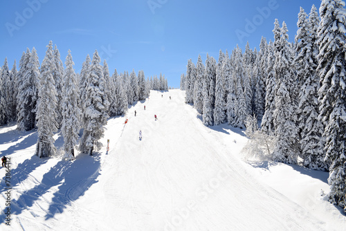 Skiers are moving at ski track