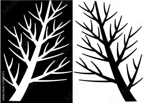 Black and White Tree - 73869274