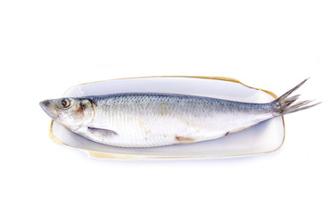 Salted herring lies on a white plate