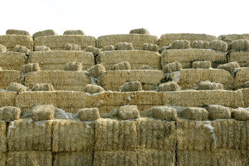 stack of straw - 5