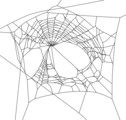 old black web with large holes