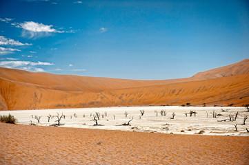Deadvlei, Sossusvlei,Namibia