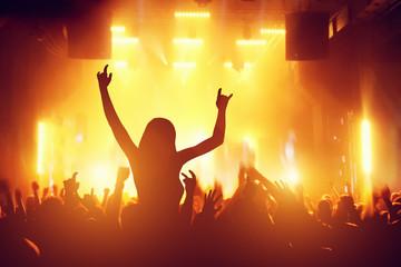 Concert, disco party. People having fun in night club