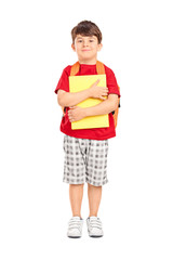 Cute schoolboy holding books