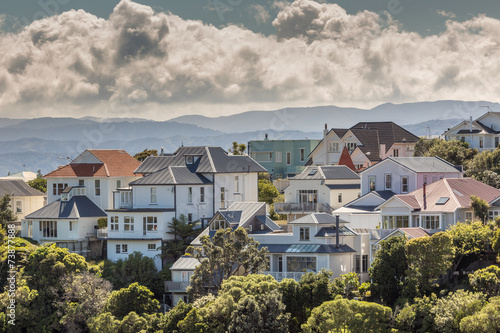 Tuinposter Nieuw Zeeland A city scape of Wellington, New Zealand