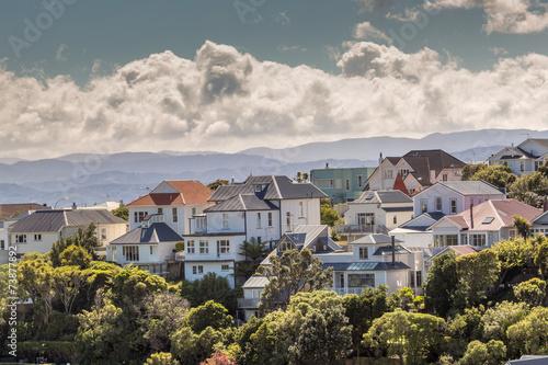 Fotobehang Nieuw Zeeland A city scape of Wellington, New Zealand