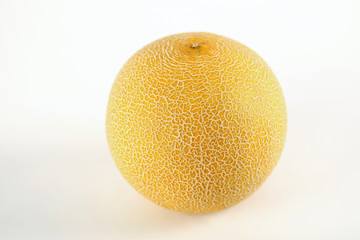 yellow mellon