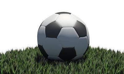 Pallone da calcio su erba
