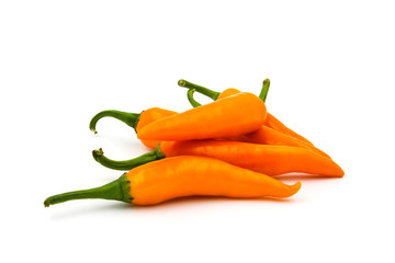 Hot chili pepper isolated on a white background