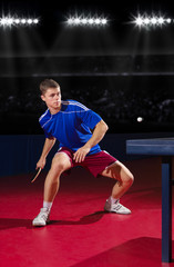 Table tennis player at sport hall
