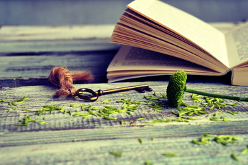 Open book with key on a wooden background