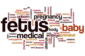 Fetus word cloud