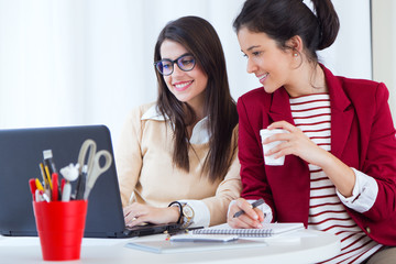 Two young businesswomen working with laptop in her office.