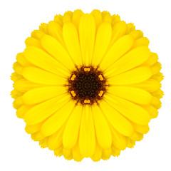 Yellow Mandala Flower Ornament. Kaleidoscope Pattern Isolated