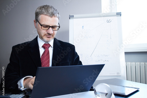 canvas print picture businessman with laptop