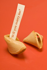 Marry Me 3 Fortune Cookie