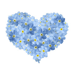 forgetmenot heart and white background