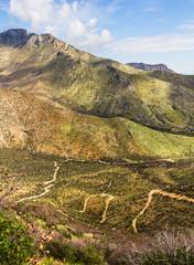 Paths on Huachuca mountains