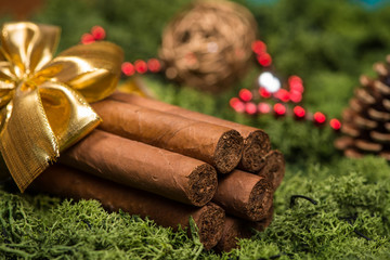 Cuban cigars Christmas gift with golden ribbon and ornaments