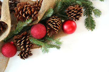 Christmas Bulb, Pine cone and Evergreen Border Isolated on White