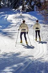 skieur de fond dans la forêt