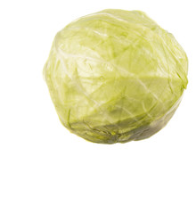 Green cabbage over white background