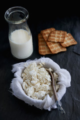 Handmade ricotta cottage cheese with crackers
