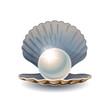 Shiny pearl in opened seashell - 73907828