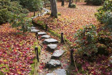 秋の京都大河内山荘の庭石