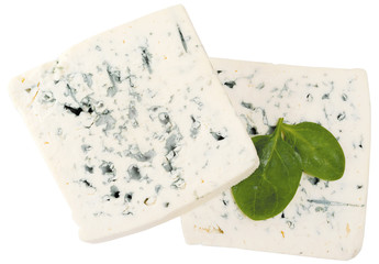 blue cheese decorated with arugula isolated