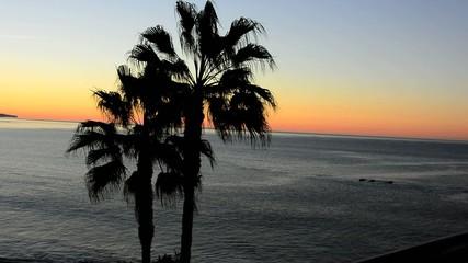 Early Morning Laguna Beach