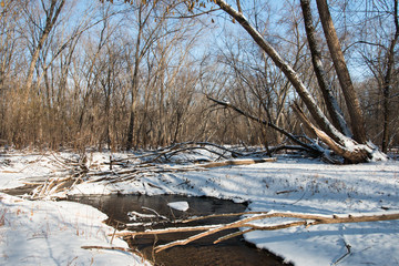 Bend of a creek in winter forest