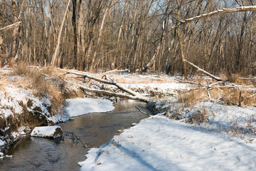 Shallow creek in winter forest