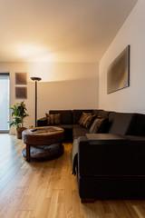 Beauty interior with corner sofa