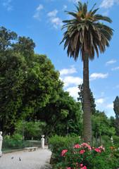 Les jardins de la Villa Borghèse