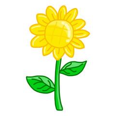 Sunflower isolated illustration
