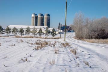 Dairy Farm in winter