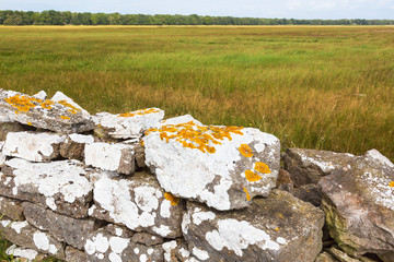 Stone wall at the meadow