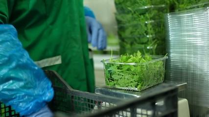 Confezionamento verdura