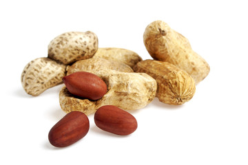 Dried peanuts isolated on the white background