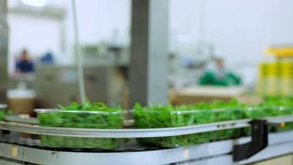Confezionamento vassoi verdure