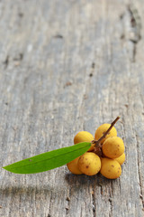 Rauwenhoffia siamensis Scheff fruit  on wood