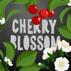 Floral background with cherry berries and blossom branch