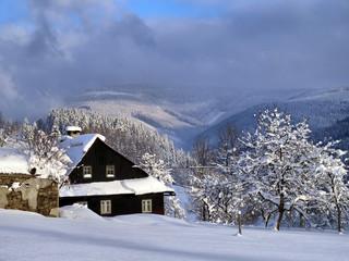 A Winter morning in village