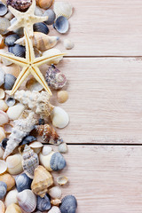 Starfish and seashells on a wooden rustic board