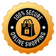 Safe secure shopping icon