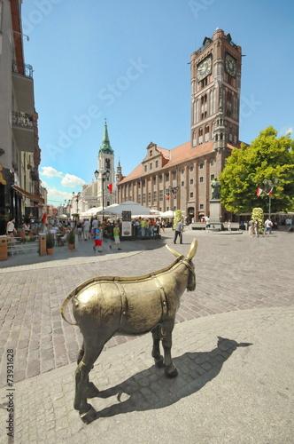 Esel, Rathaus, Torun, #8726