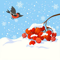 winter illustration with a branch of rowan and bird